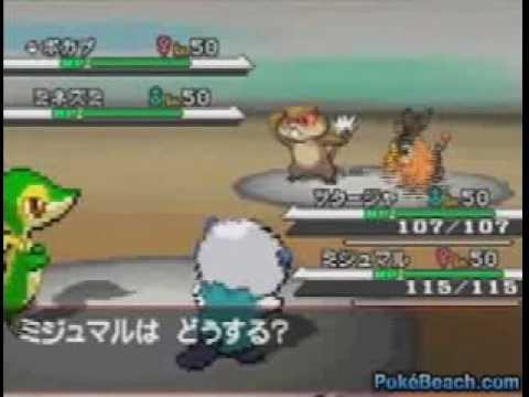 Pokemon Black Cheats & Codes for Nintendo DS (DS