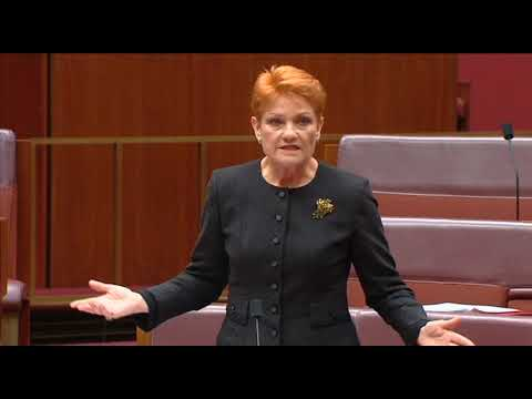 Pauline Hanson Speech on The Farm Household Support Amendment (Temporary Measures) Bill 2018