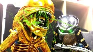 Alien VS Predator Stop Motion 異型VS終極戰士