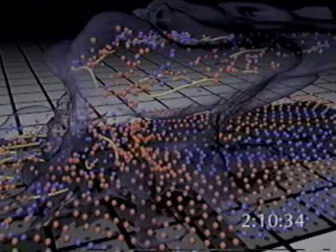 Larry Smarr - Scientific Visualization From the Atom to the Universe
