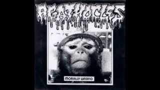 Agathocles - Violent Noise Attack (FULL SPLIT)