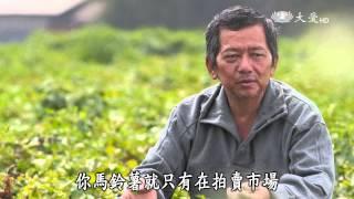 【農夫與他的田】20150511 - 黃金馬鈴薯