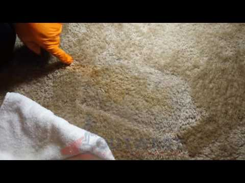 Orange Stain Removal  - OutWest Carpet Cleaning, Cedar City, UT