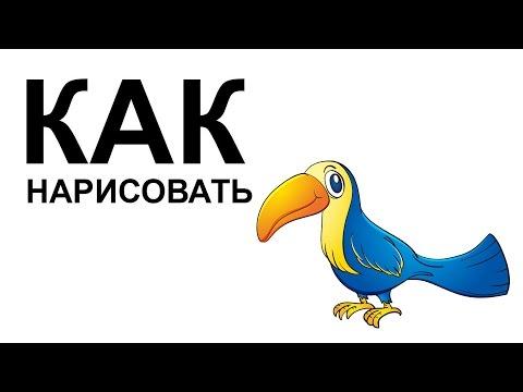 Атлас определитель птиц России
