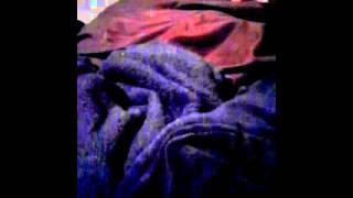 Beanie Boo Five Nights At Freddy Beanie Boo Style