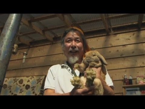 Hero rescues pets from Fukushima nuclear wasteland