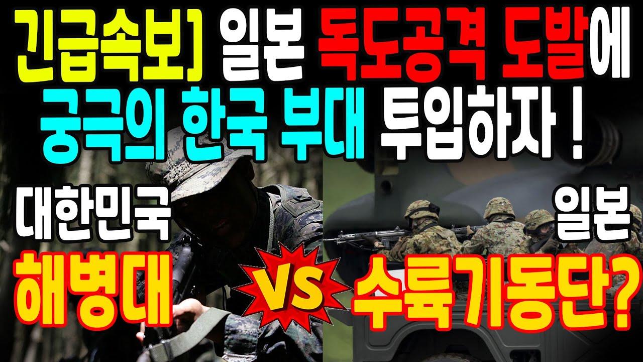일본이 독도 공격한다며 도발하자 궁극의 한국 부대 투입!  해병대 VS 일본 수륙기동단?
