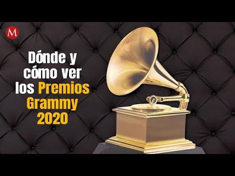 Dónde y cómo ver los Premios Grammy 2020