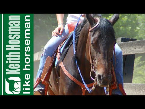 Give Your Horse the Idea in 2 Minutes: Release on the Thought
