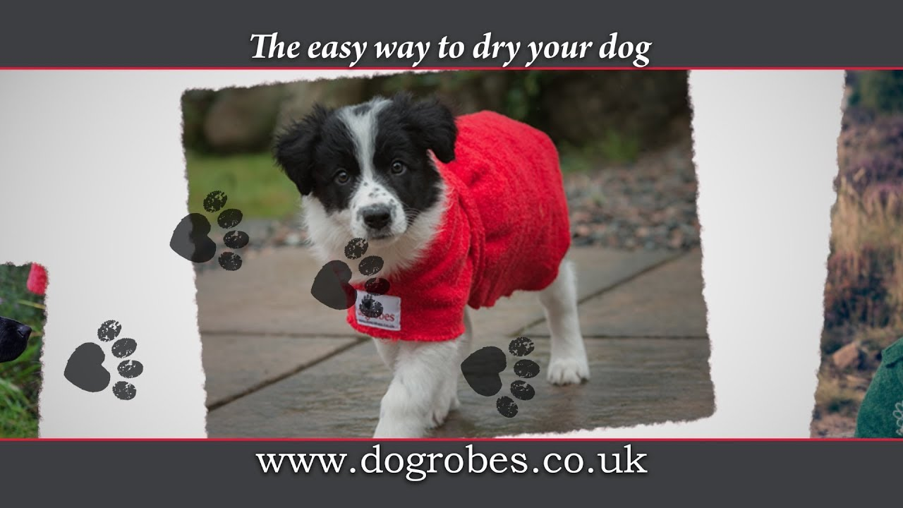 1af14bec56e1 Dogrobes & Accessories - The easy way to dry your dog
