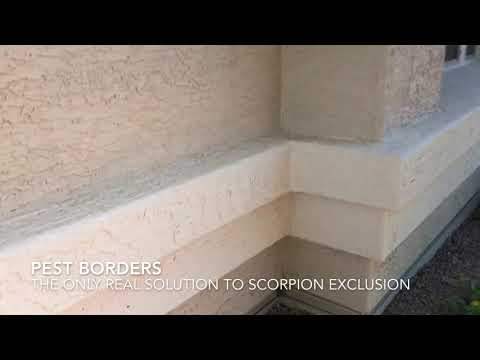Scorpion pest control exclusion