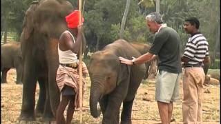 Шри-Ланка. Золотой глобус - 37