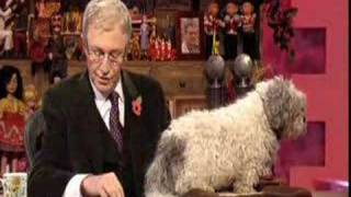 Paul O'Grady Show - Post Bag & Homeless Puppies