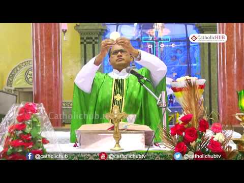 English Mass @ Shrine of Our Lady of Our Health, Khairatabad, HYD, TS, INDIA 30-07-2017