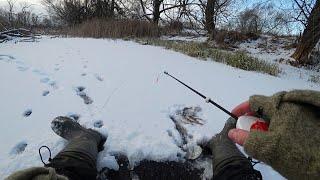 На этой лунке поклевки одна за одной Зимняя рыбалка на безмотылку