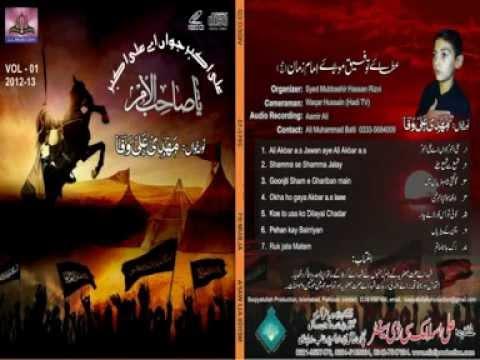 new mehdi ali wafa 2013 noha-shama sy shama jale