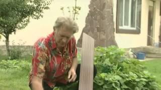 Террасная доска композитная, древесно-полимерная(, 2012-08-06T10:23:08.000Z)