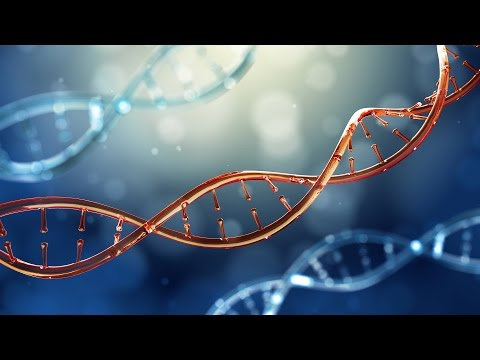 A Leap Forward in Genome Engineering