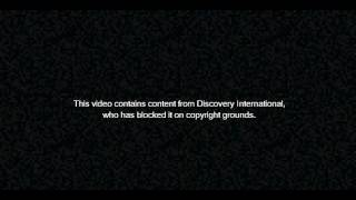 This video contains content from Discovery International, who has blocked it on copyright grounds.