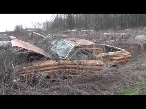 junkyard finds/ classic cars