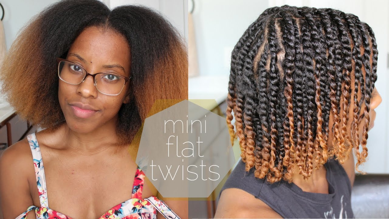 Mini Flat Twists on Blown Out Natural Hair | Eugenia Says