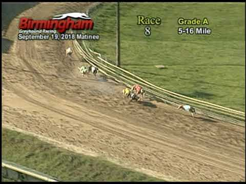 09/19/18 Afternoon Race #8