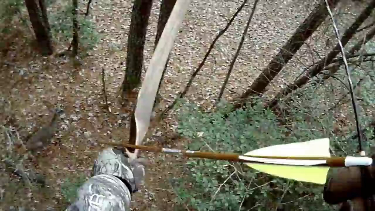 traditional self bow whitetail deer hunt
