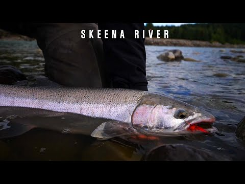 Canada Steelhead Fly Fishing