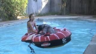 Minion and Alex sail the 7 Seas