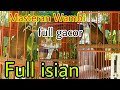 Masteran Wambi Super Gacor Durasi Panjang Full Isian  Mp3 - Mp4 Download