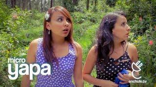 MicroYAPA: Regreso a Casa