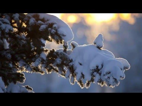 Песни про зиму и о зиме -