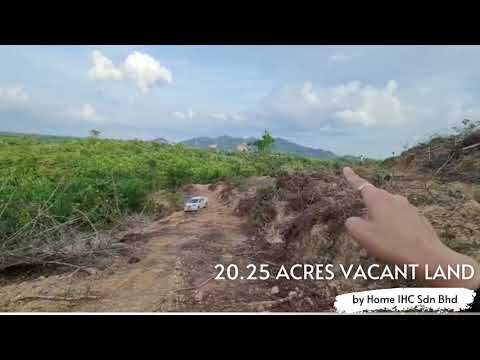 26 acres Lanchang Facing Main Road Oil Palm Land & Second Lot Vacant Land for Sales