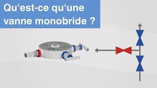 Qu'est-ce qu'une vanne monobride ? | Fonction, versions et domaines application