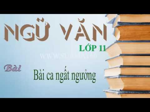 Ngữ văn lớp 11, Bài ca ngất ngưởng, Thuan mai, on thi