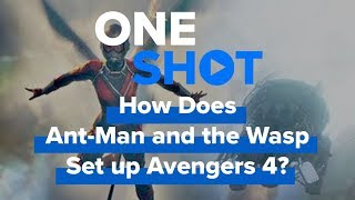 How Does Ant Man and the Wasp Set Up Avengers 4?! - One Shot