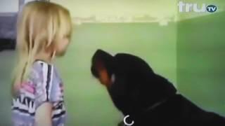 Vídeos mas tontos del mundo truTV