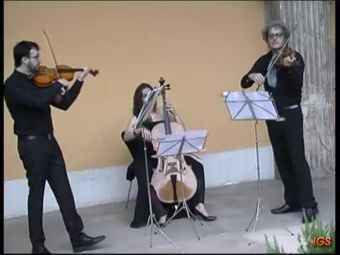 Noche En Blanco Zaragoza 2017 El Trovar Grupo Musical Youtube
