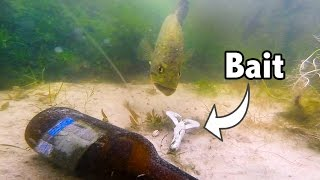 big bass eating baits on gopro   amazing underwater bed fishing see comment for contest
