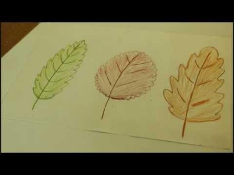 Как нарисовать листочки