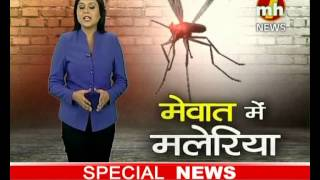 Mewat Me Malaria | Special News | MH ONE NEWS
