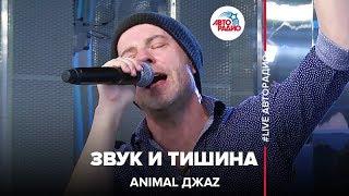 Animal ДжаZ - Звук и Тишина (#LIVE Авторадио)