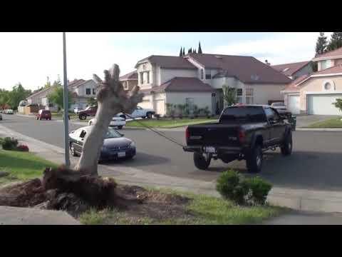 Cars against hemp, power