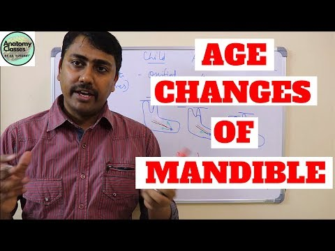 Age changes of Mandible