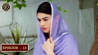 Beti Episode 13 - Top Pakistani Drama