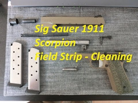 field strip sig 556