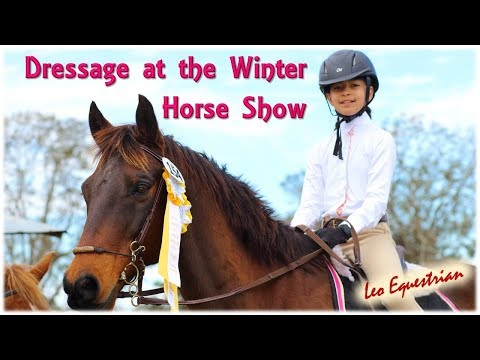 Winter Show Dressage Highlights_Leo Equestrian