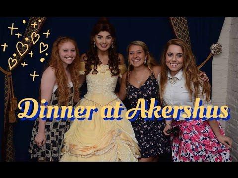 Dinner at Akershus - DCP Fall 2016
