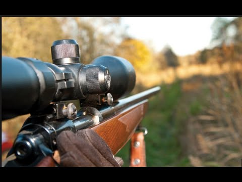 HB1231 APPROVED: Indiana ALLOWS High-Powered Rifles For 2016 Deer Hunting Season