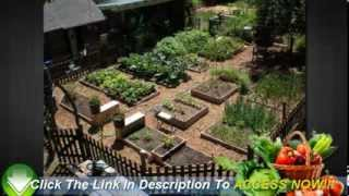 Vegetable Gardening For Beginners - 6 Easy Tips To Start You Off